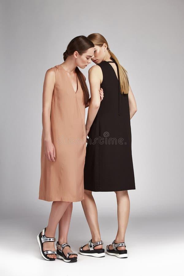 Download Brune De Deux Femmes De Belle Mode Et Blond Sexy Image stock - Image du blond, couleur: 76082959