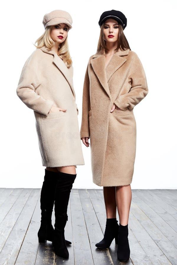 Brune parfait de forme de corps de beau des affaires deux de femme style de dame image libre de droits
