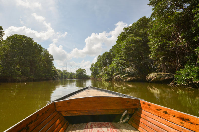 Brunei River - boat trip. Boat trip on a Borneo jungle river, few miles away from Bandar Seri Begawan (BSB), capital city of Brunei Darussalam stock photo