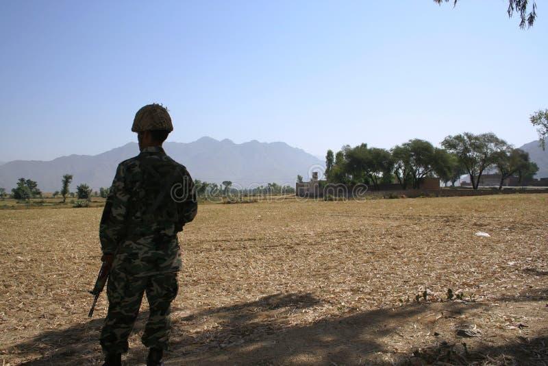 Bruner in Pakistan lizenzfreies stockfoto