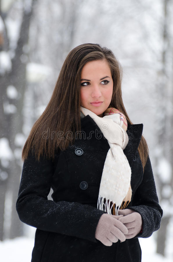 brunetka piękny portret obraz stock