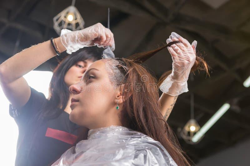 Brunetka stylista gruntownie farbuje włosy żeński klient obraz royalty free
