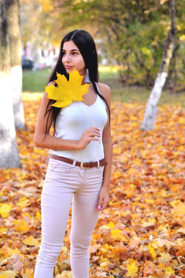 Brunetki dziewczyna park stoi na żółtych jesień liściach, trzyma liść klonowego w jej ręce, pogodny wieczór z białymi cajgami fotografia royalty free
