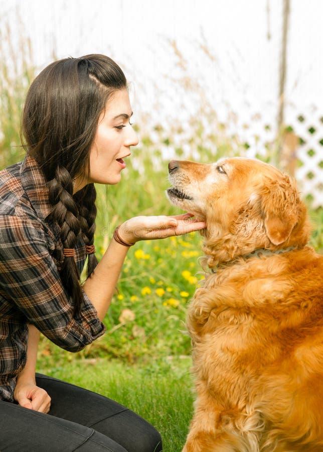 Brunetki kobieta Chwali Jej golden retriever psa kieł zdjęcie stock