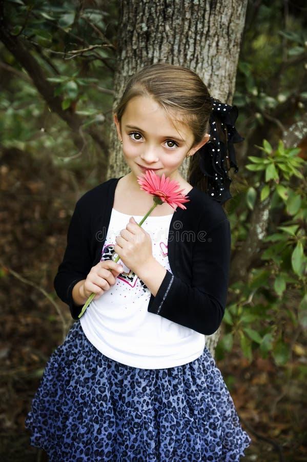 brunetki piękna dziewczyna obraz stock