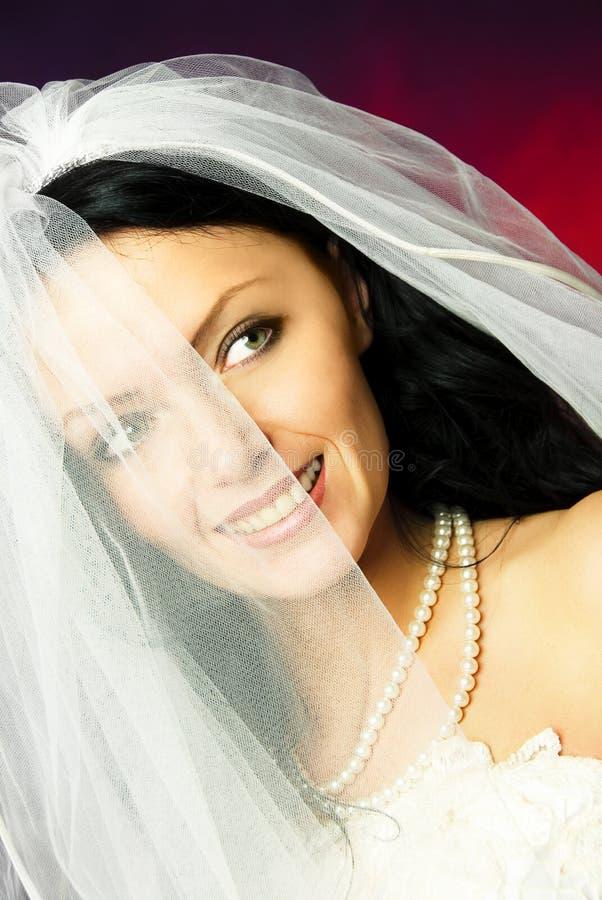 brunette νυφών προκλητικό στοκ εικόνες με δικαίωμα ελεύθερης χρήσης