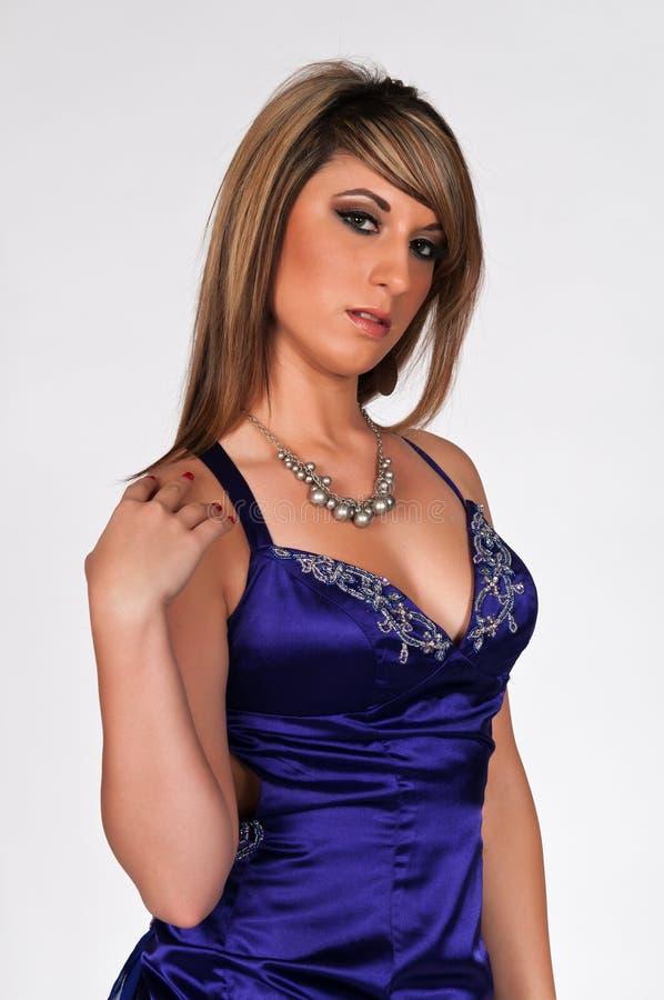 brunette στοκ εικόνες
