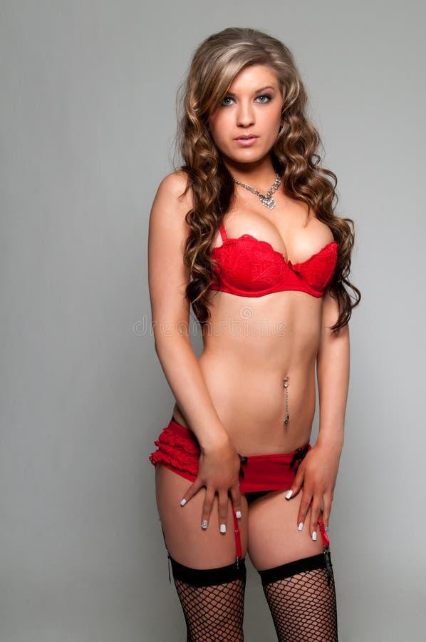 Download Brunette stock photo. Image of girl, attractive, brunette - 24410824