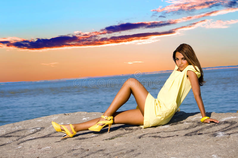 Brunette royalty free stock image