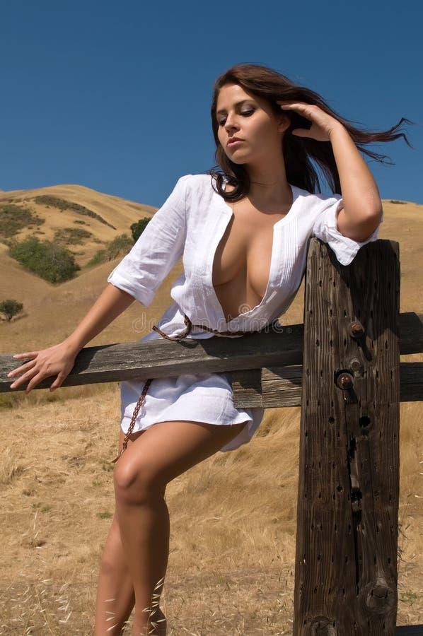brunette στοκ φωτογραφία με δικαίωμα ελεύθερης χρήσης