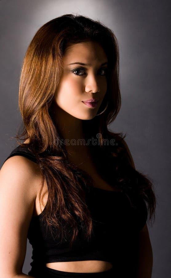 Free Brunette Beauty Stock Image - 4928101