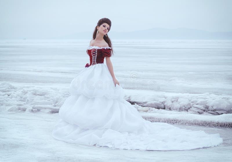 Brunette bonito em um vestido fotos de stock