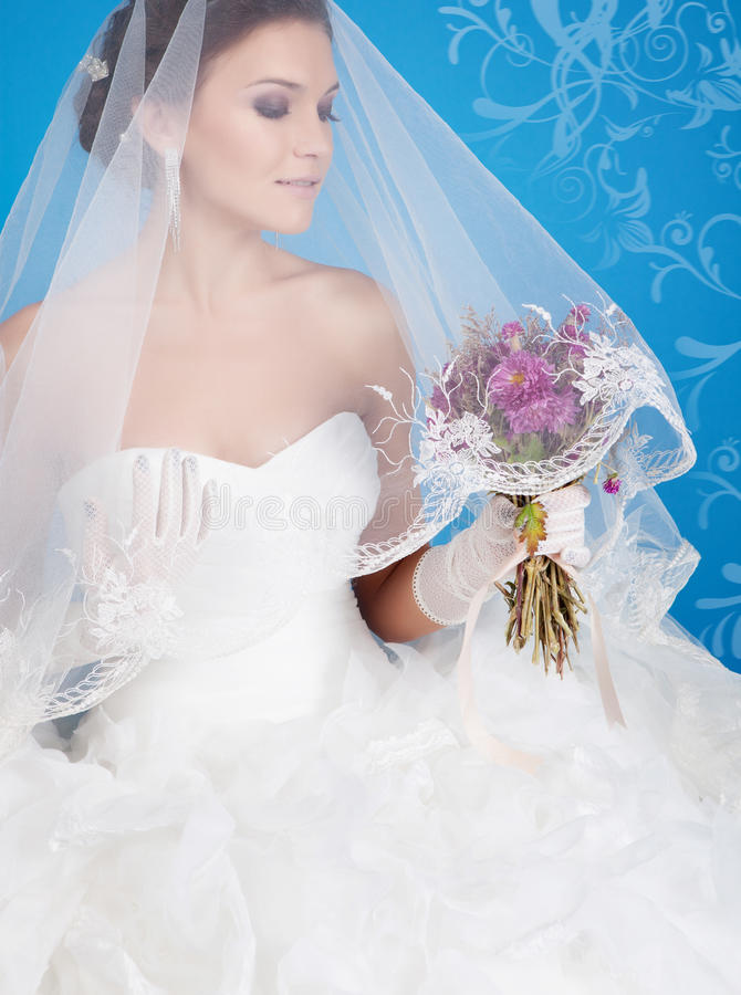 Download Brunette bride stock photo. Image of healthy, closeup - 23233254