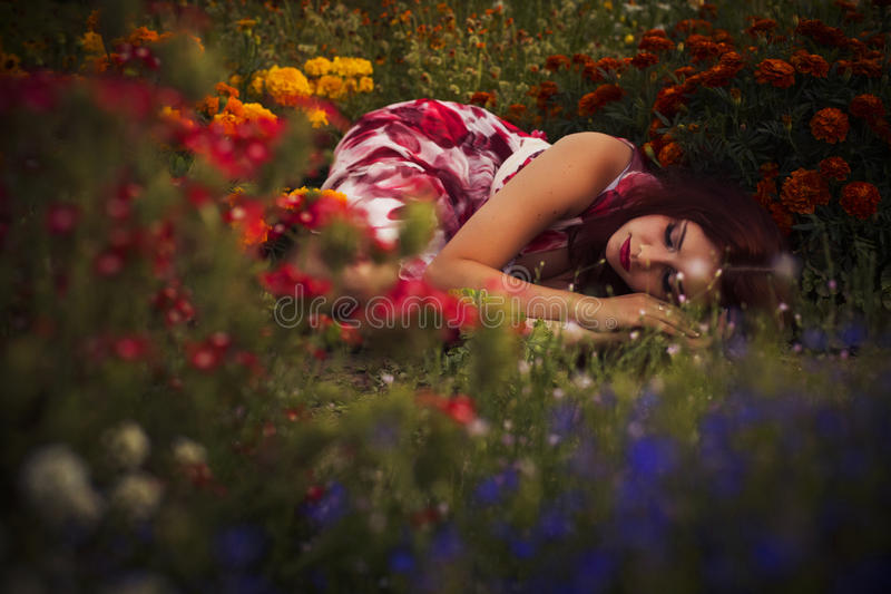 Beautiful brunette caucasian woman in white and red dress at the park in red and yellow flowers on a summer sunset Peaceful sleep royalty free stock photography