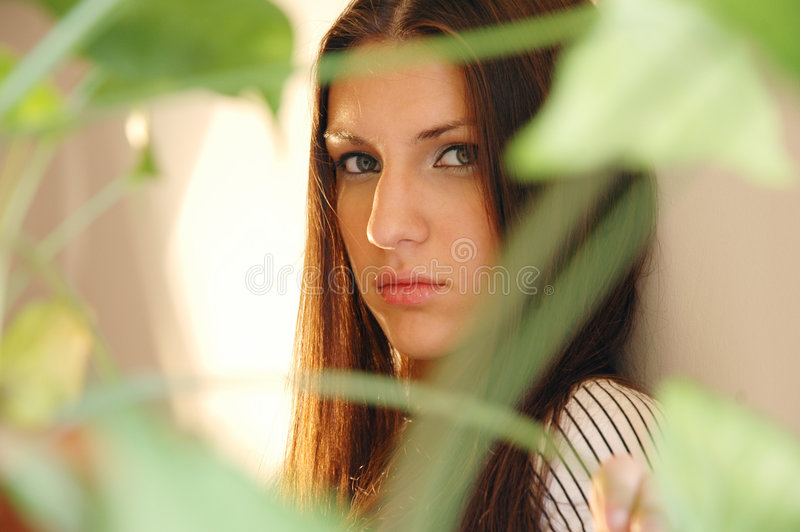 Brunette Daydreaming fotos de stock royalty free