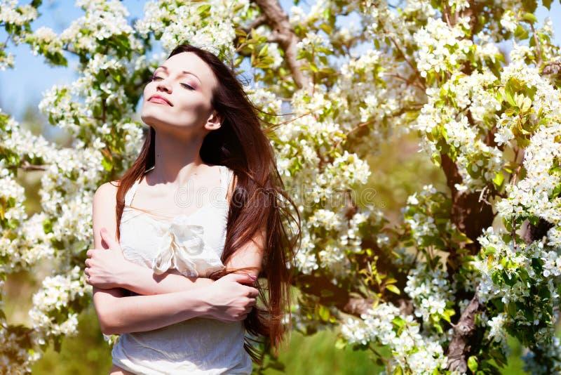 Download Brunette Girl In Blossom Garden Stock Photo - Image of girl, outsides: 24500080