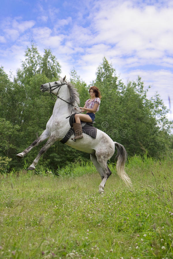 Brunette girl with horse stock photography