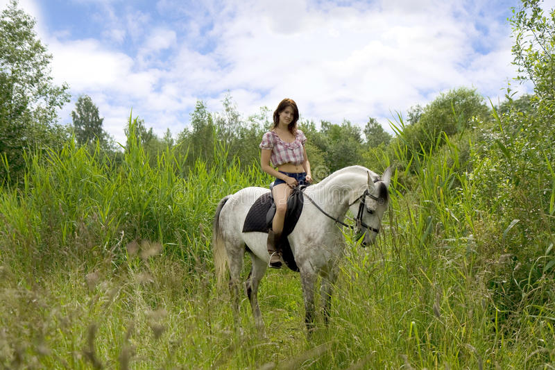 Brunette girl with horse stock images