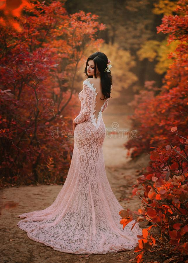 A brunette girl with long hair, in a sumptuous pink dress with a long train and an open, seductive back. The lady poses. Against the backdrop of a fabulous stock photography