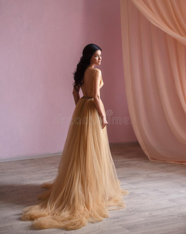 The brunette girl in a luxurious dress. Background white room. Film colors stock photo