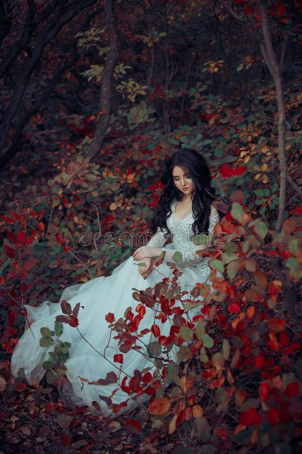 Princess in the a grim autumn garden. A brunette girl, with luxurious, thick hair, sits on the nature. The background is fiery autumn. Hudozhestvennaya photo stock image