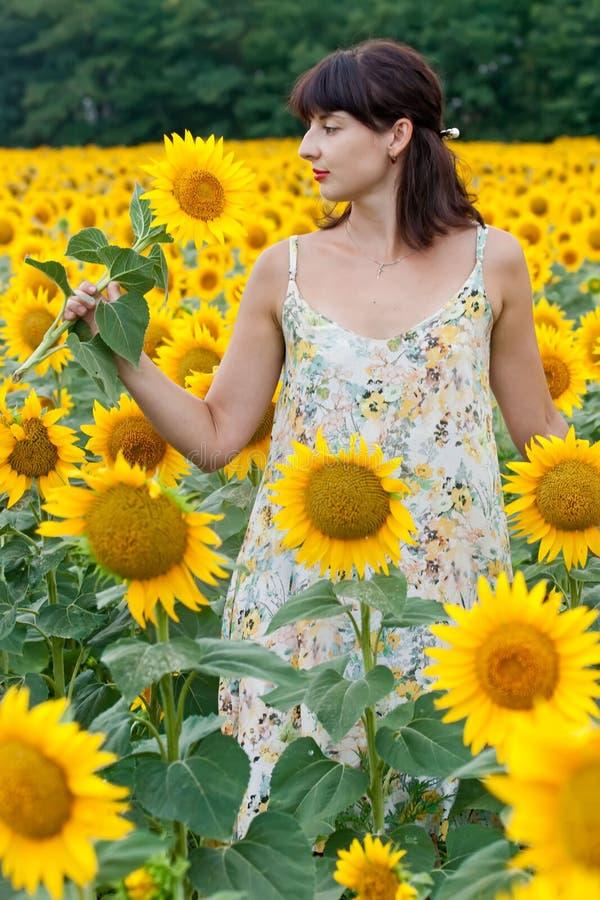 Brunette kvinna i solrosfält royaltyfria bilder