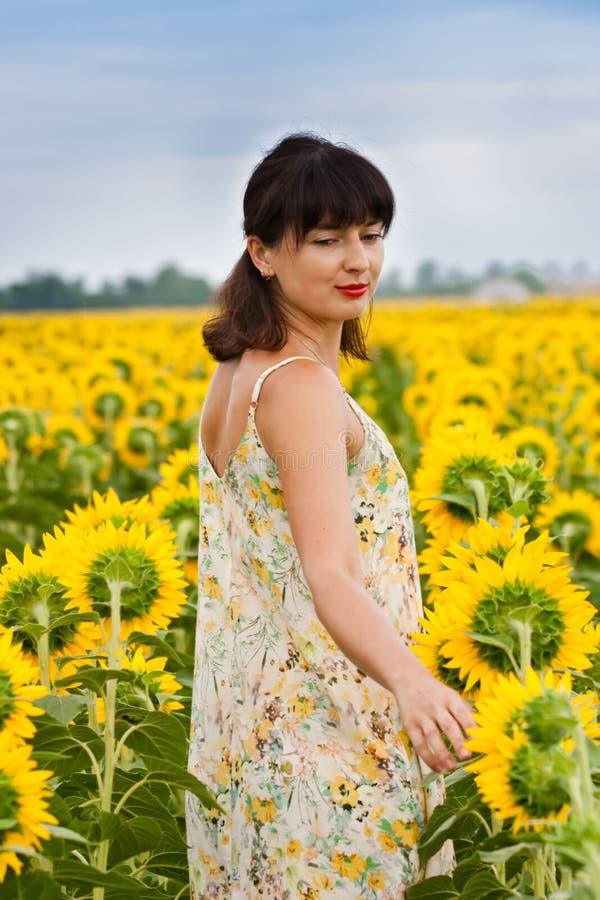 Brunette kvinna i solrosfält royaltyfri fotografi