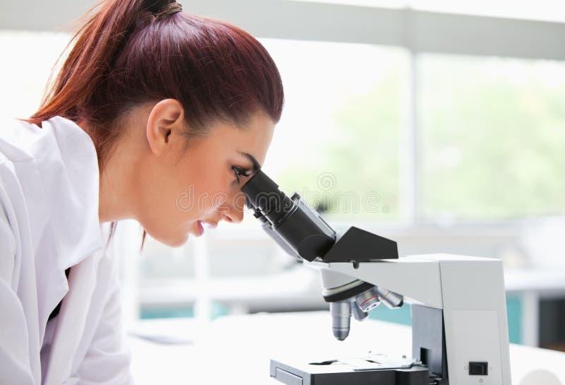 Brunette regardant dans un microscope photographie stock