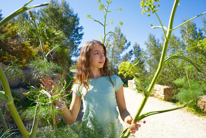 Brunette teen girl in Mediterranean track. With fennel plants royalty free stock photo