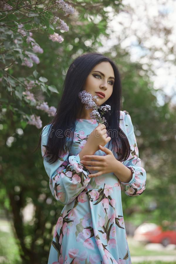 Brunette woman in the branches of a beautiful flowering tree. Short summer dress on the girl body. Spring walk in the Park, royalty free stock photography