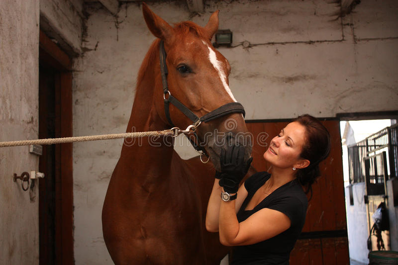 Brunette woman grooming brown horse for the riding. In the stable stock image