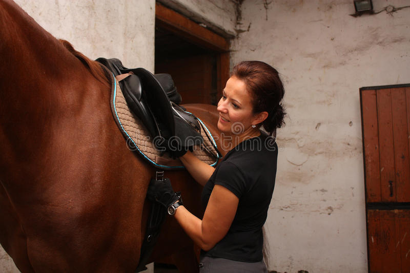Brunette woman saddling up brown horse. In the stables stock photo