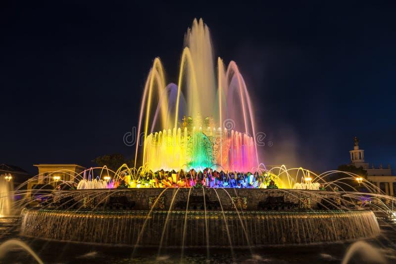 Brunnen 'Steinblume 'auf Gebiet der Gesamt-russischen Ausstellungsmitte VDNH nachts moskau lizenzfreie stockfotos