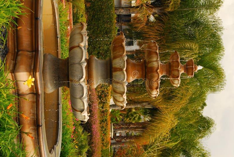 Brunnen und Palmen stockbild