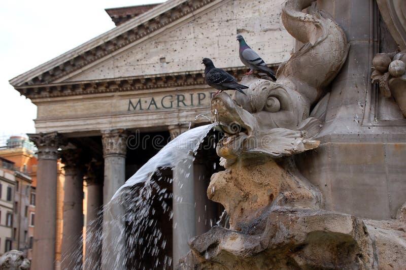 Brunnen und Pantheon - Rom lizenzfreies stockbild