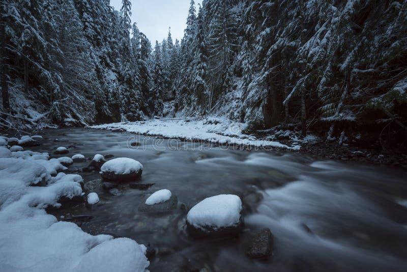 Brunnliten vikfrost fotografering för bildbyråer