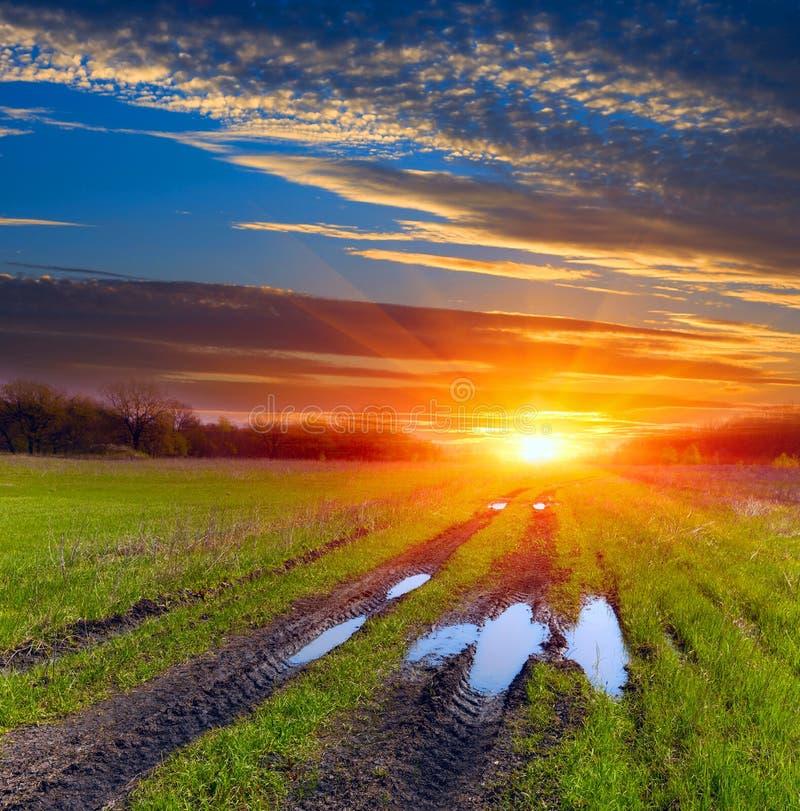 Brunstgrusväg över stäppen efter regn på solnedgånghimmelbakgrund royaltyfria bilder