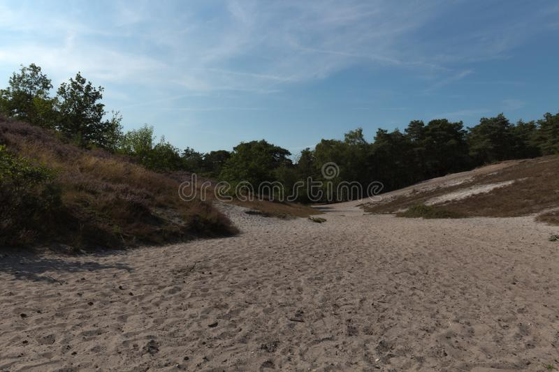 The Brunsummerheide a national park in the Limburg the Netherlands. Ideal place for an active lifestyle stock photo
