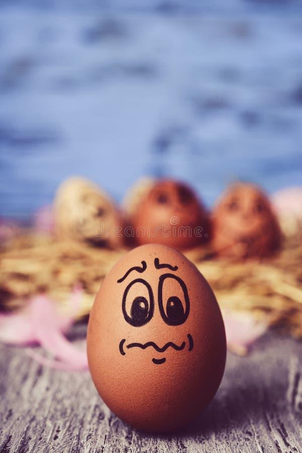 Brunt ägg med en rolig framsida arkivbild