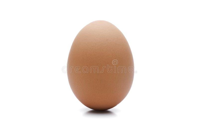Brunt isolerat ägg fotografering för bildbyråer