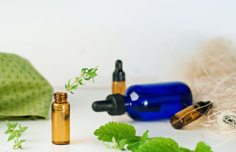 Brunt- och blåttflaskor av nödvändig olja med den nya mintkaramellen och thym fotografering för bildbyråer