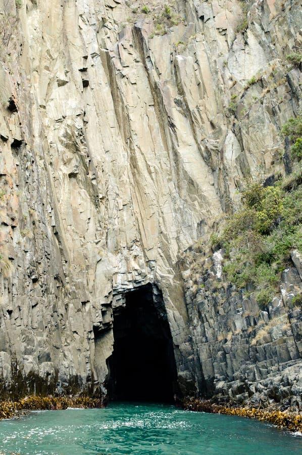 Bruny wyspy falezy Tasmania, Australia - obraz stock