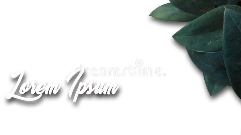 brusbakgrundsdesign, med färg, för text- eller bakgrundsmallar royaltyfria bilder