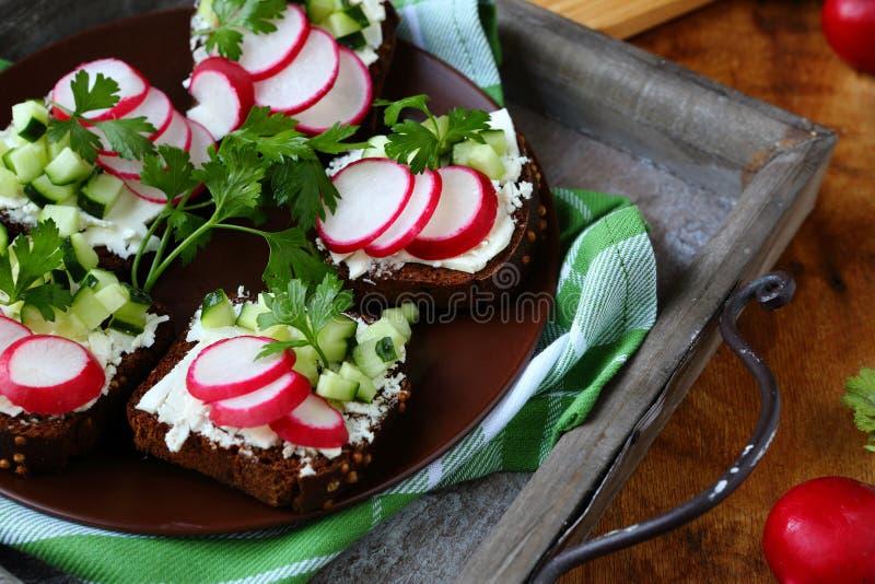 Bruschetta med mjuk ost och rädisan på plattan royaltyfria bilder