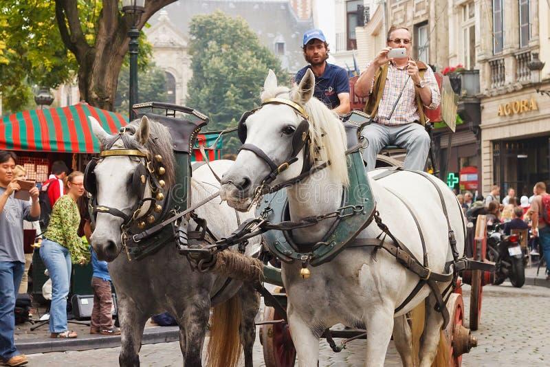 BRUSELAS, BÉLGICA - 6 DE SEPTIEMBRE DE 2014: Presentación de la cervecería del ` s de Martin con el carro del caballo foto de archivo libre de regalías