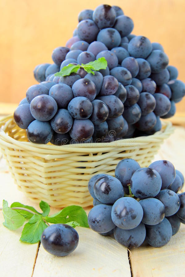 Brush black sweet grapes in a basket stock image