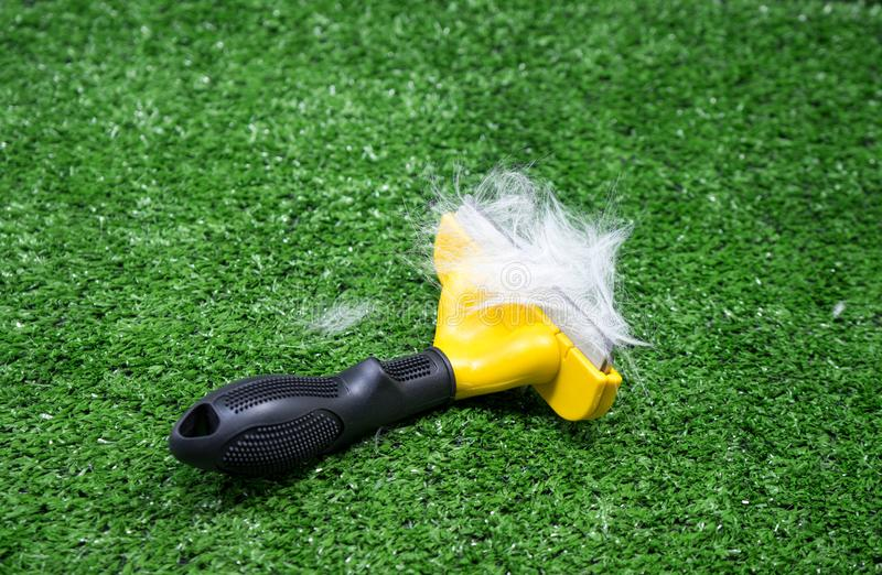 Brush for cat or dog with fur on green grass. Background. Grooming concept royalty free stock photos