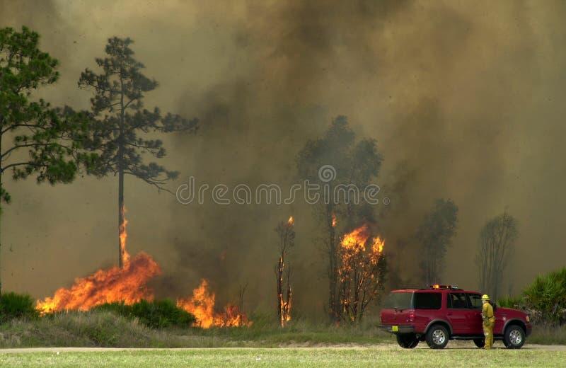 Brush Fire, Florida stock photos