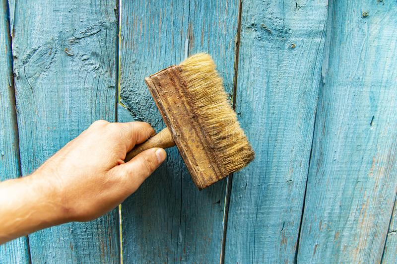 Brush in hand - painting a wooden fence stock image