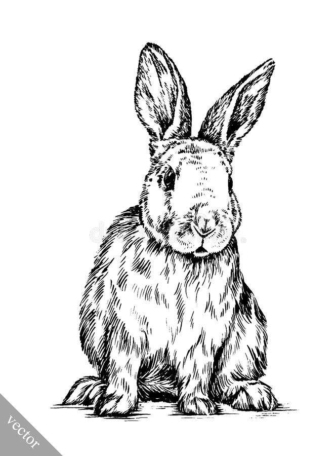 Line Art Easter Bunny : Brush painting ink draw isolated rabbit illustration stock